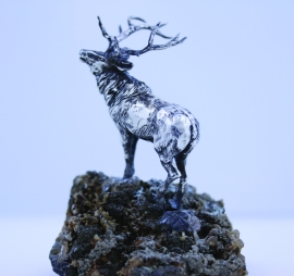 Elk 1 Star Yorksm