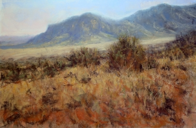 2016 2nd Place - Bonnie Williams NM Evening.jpg