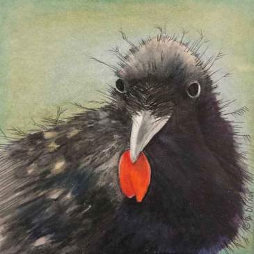 Painting of a raven with a red poppy petal in its beak by BJ Briner