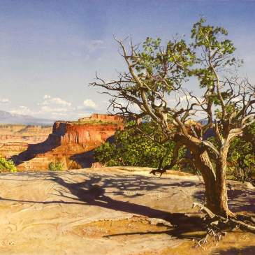 Watercolor painting of shadows from trees on the edge of a mesa top by Marlin Rotach as seen at Sorrel Sky Gallery